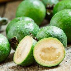 Фейхоа – вкусный и полезный плод