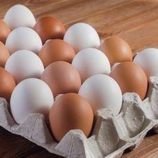 Как хранить яйца