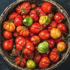 Как и где хранить помидоры в домашних условиях