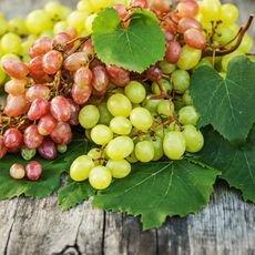 Как правильно хранить виноград и виноградные листья в домашних условиях