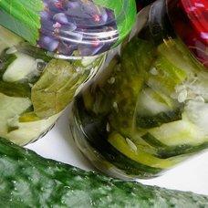 Салат на зиму из переросших огурцов: рецепты